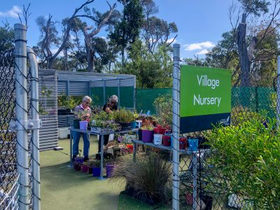 Village Nursery supports the return of Oyster Harbour's lost lake